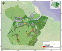 Situação do desmatamento nos assentamentos de reforma agrária no Estado do Pará