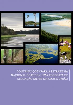 Estados amazônicos lançam publicação com propostas para a Estratégia Nacional de REDD+