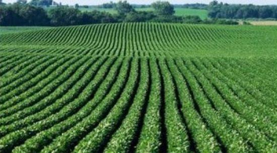Com US$ 96 bilhões, exportações do agronegócio têm aumento de 13% em 2017