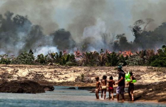 Queimada florestal junto ao rio Xingu (Pará), preparando terreno para a represa de Belo Monte.  LILO CLARETO