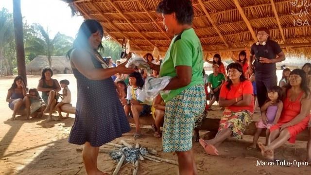 Coletoras Ikpeng e Xavante em intercâmbio na aldeia Moygu Marco Túlio-Opan