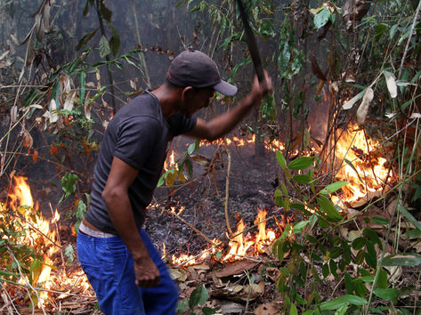 Um total de 844 focos de incêndios e queimadas foi registrado no Amazonas, entre 1º de janeiro e 10 de fevereiro deste ano (Márcio Silva)