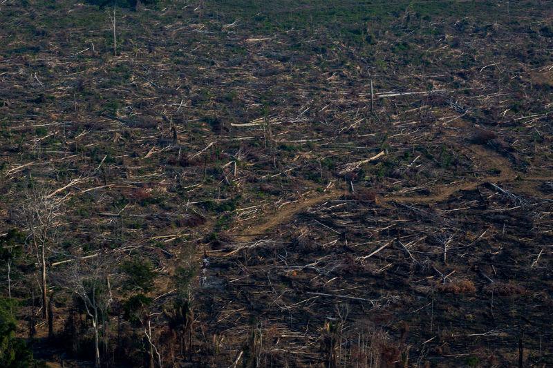 O fogo é usado tradicionalmente na Amazônia como uma técnica barata para abrir pastos para o gado ou mesmo áreas de pequenos cultivos.  Nos períodos de estiagem, as chamas se alastram com facilidade, avançando sobre unidades de conservação como a Flona Tapajós, deixando comunidades inteiras debaixo da fumaça, que espalha dióxido de carbono e metano.