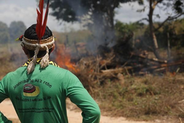 Indígenas Ka'apor queimam madeira ilegal encontrada perto da Terra Indígena Alto Turiaçu, no norte do Maranhão.  (©Lunaé Parracho/Greenpeace)