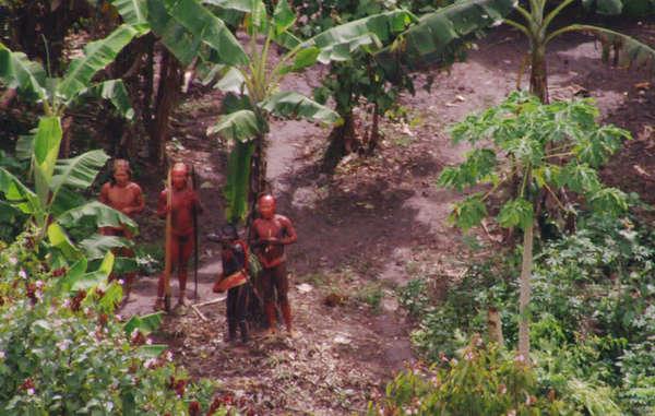 O Brasil é lar para mais tribos isoladas do que qualquer outro país.  Sabemos muito pouco sobre elas, mas elas enfrentam o risco de aniquilação, a não ser que seu direito de determinar seus próprios futuros seja respeitado. © BBC/FUNAI/Survival
