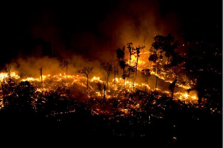 'Acostumados à barbárie': Pesquisadora de Oxford alerta para risco de normalização de incêndios na Amazônia