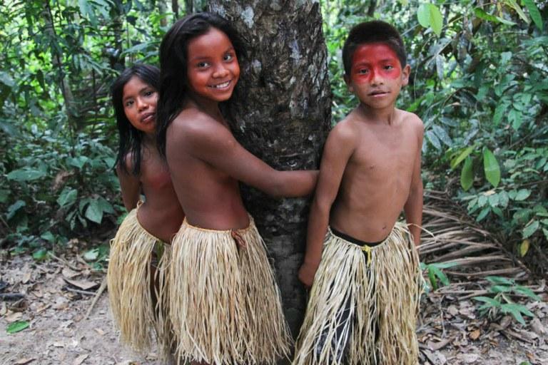"""Só no Brasil, as florestas em terras indígenas podem """"render"""" até 1 trilhão de dólares em 20 anos"""