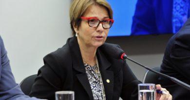 Ministra da Agricultura critica Moratória da Soja, mas diz que discussão cabe ao mercado