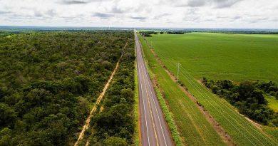 Por um modelo agrícola que não destrua o Cerrado