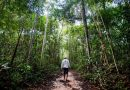 Brasil tem 4.536 áreas com risco de conflito socioambiental, indica estudo