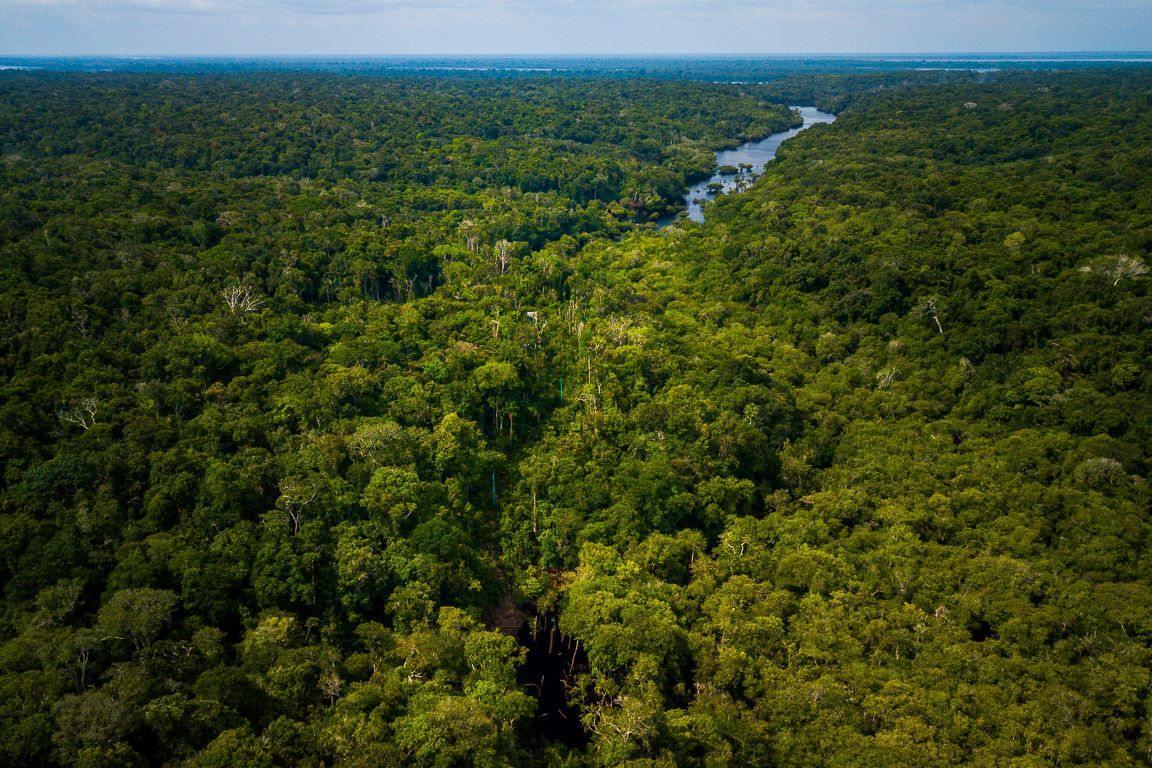 Amazonas registra segundo mês consecutivo de redução no número de ...