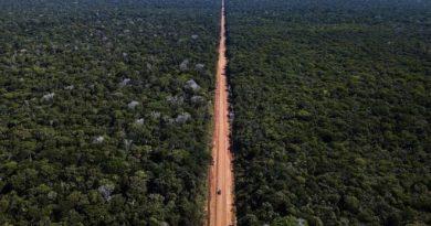 O projeto rodoviário que ameaça uma das áreas mais conservadas da Amazônia