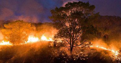 Entidades acusam grileiro de atear fogo no Mato Grosso para expulsar assentados