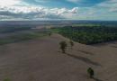 Cargill compra soja de fazendas sobrepostas a território indígena em Santarém (PA)