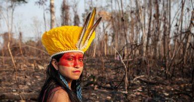 Não verás país nenhum: em ano marcado por queimadas, terras indígenas foram devastadas pelo fogo