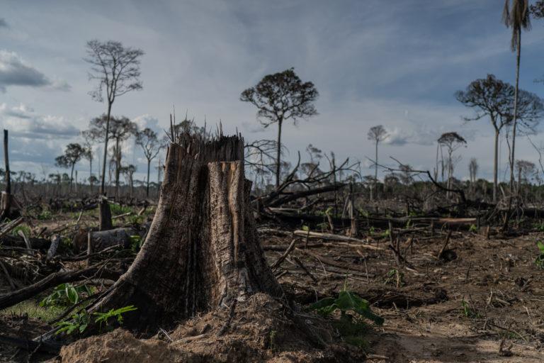 Lira adia votação PL que altera o licenciamento ambiental