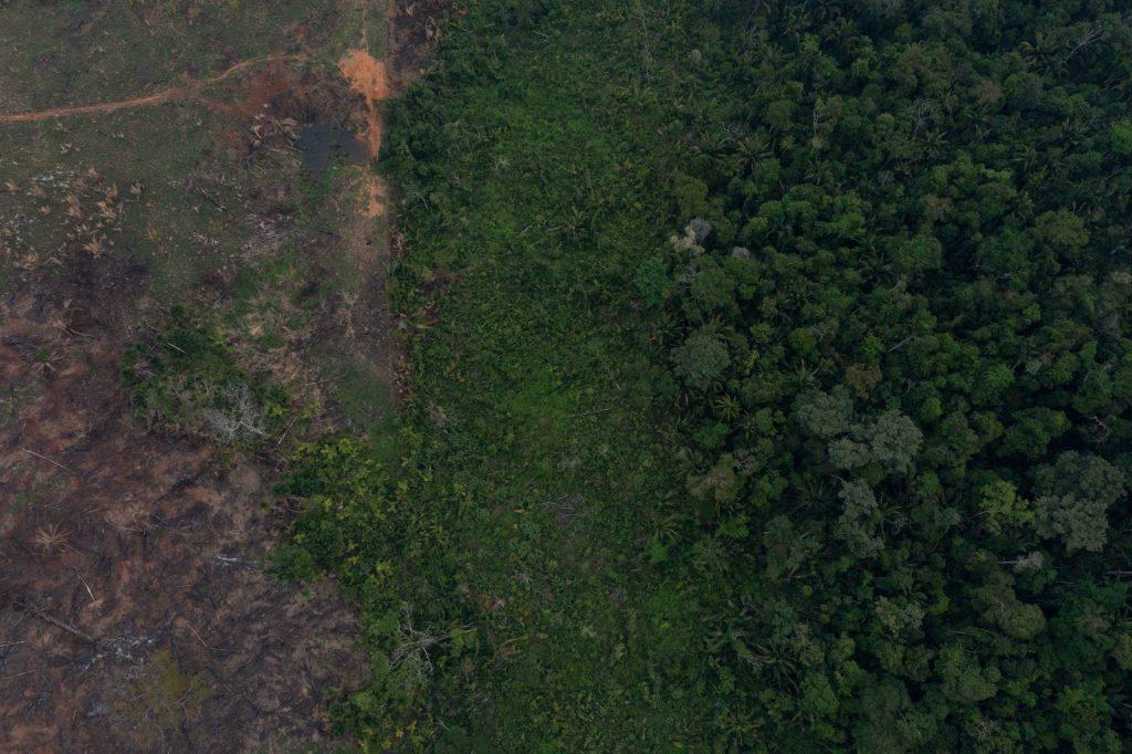Após aprovação de lei que reduziu áreas protegidas em Rondônia, ameaças e invasões aos territórios indígenas se intensificaram