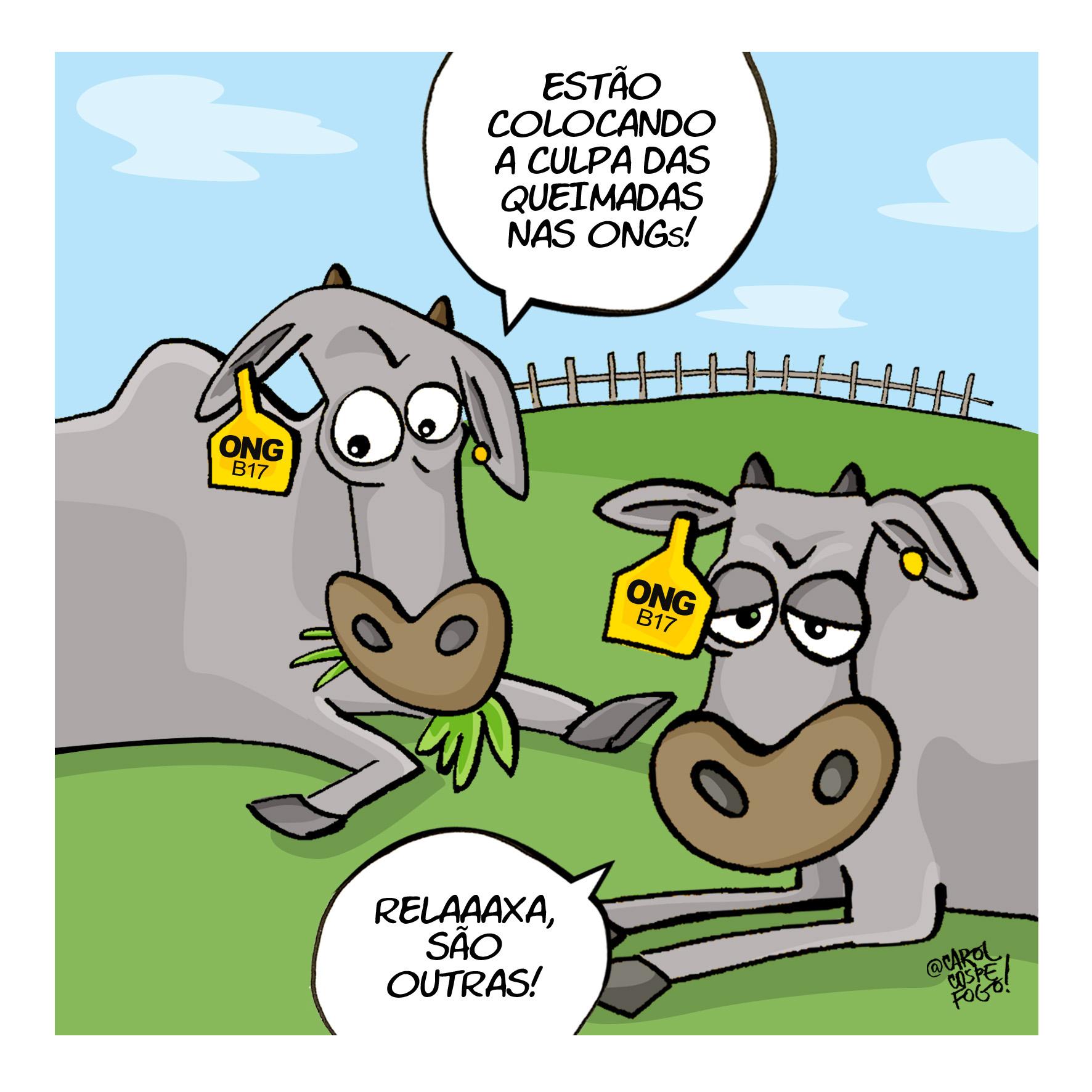 ong_fazenda