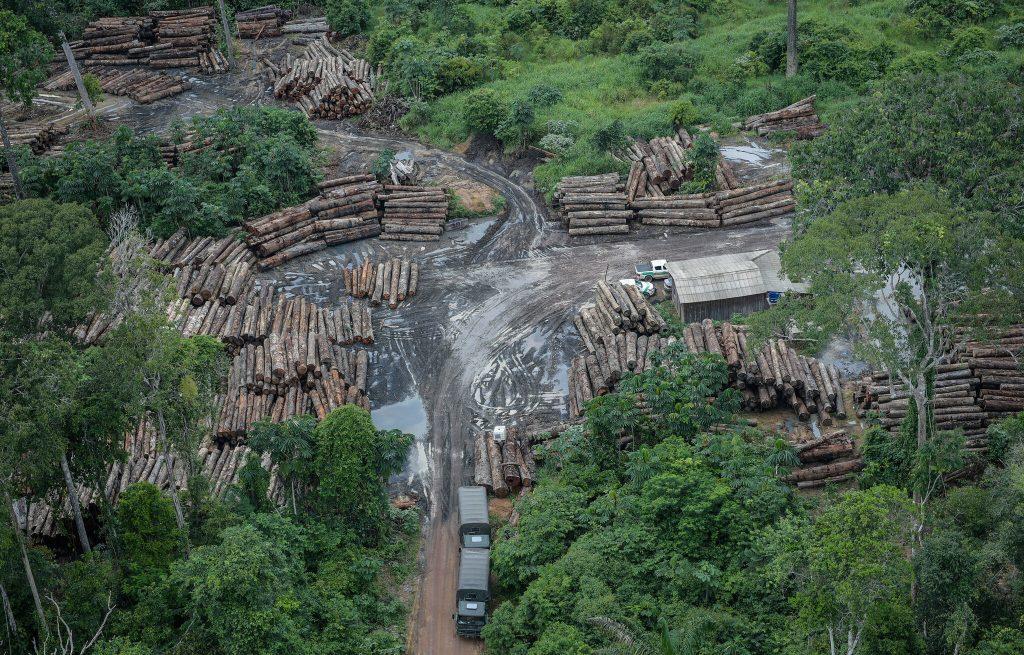 Leite repete Salles e desinforma sobre combate ao desmatamento