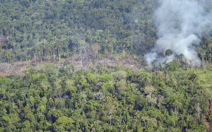 Alerta no Xingu! Agosto registrou pior desmatamento desde 2018